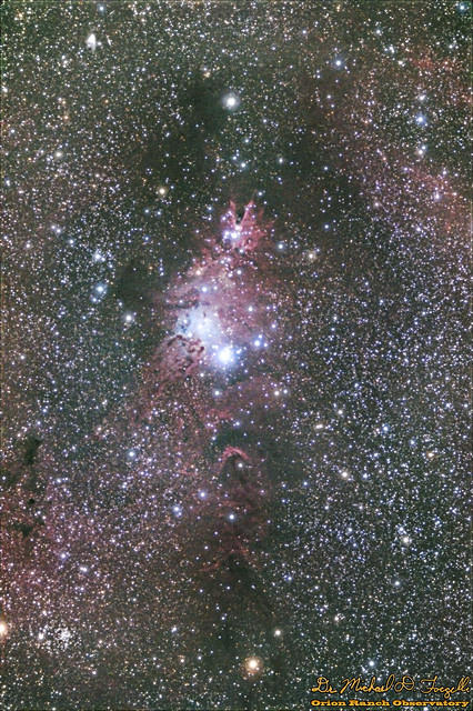 NGC 2264 - The Christmas Tree Cluster and Cone Nebula - 101212